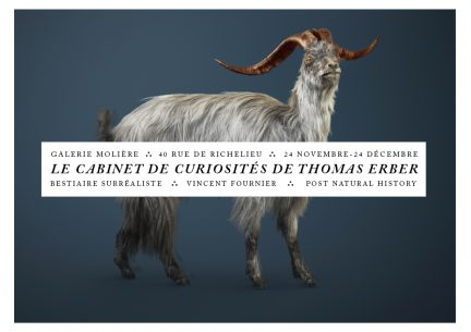 le Cabinet de Curiosités de Thomas Erber
